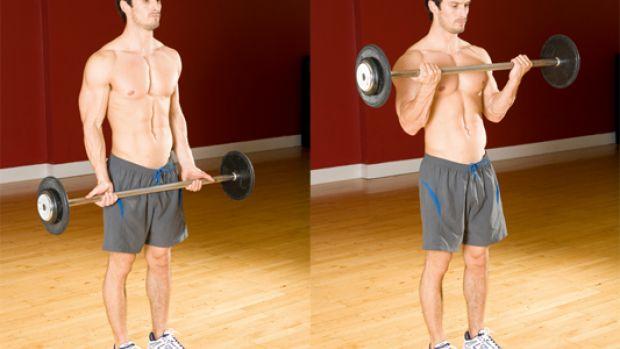 muscler_biceps