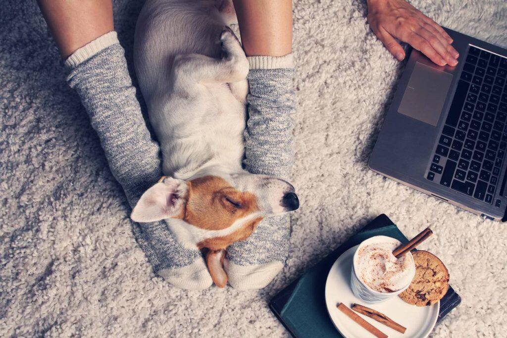 femme et son chien en coocooning